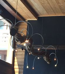 Fourmi-lampe